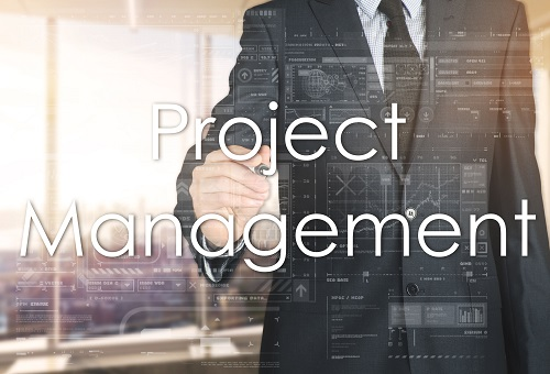 Project Managers skills